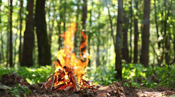 Bács-Kiskun megye területén tűzgyújtási tilalom került elrendelésre!