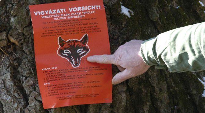 Ragadozó emlősök veszettség elleni immunizálása